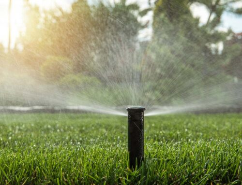 Water Usage for Central Texans